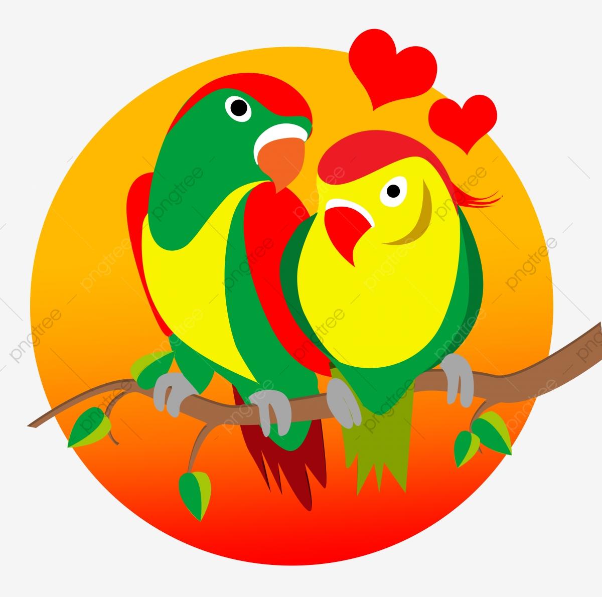 صور طيور الحب 31