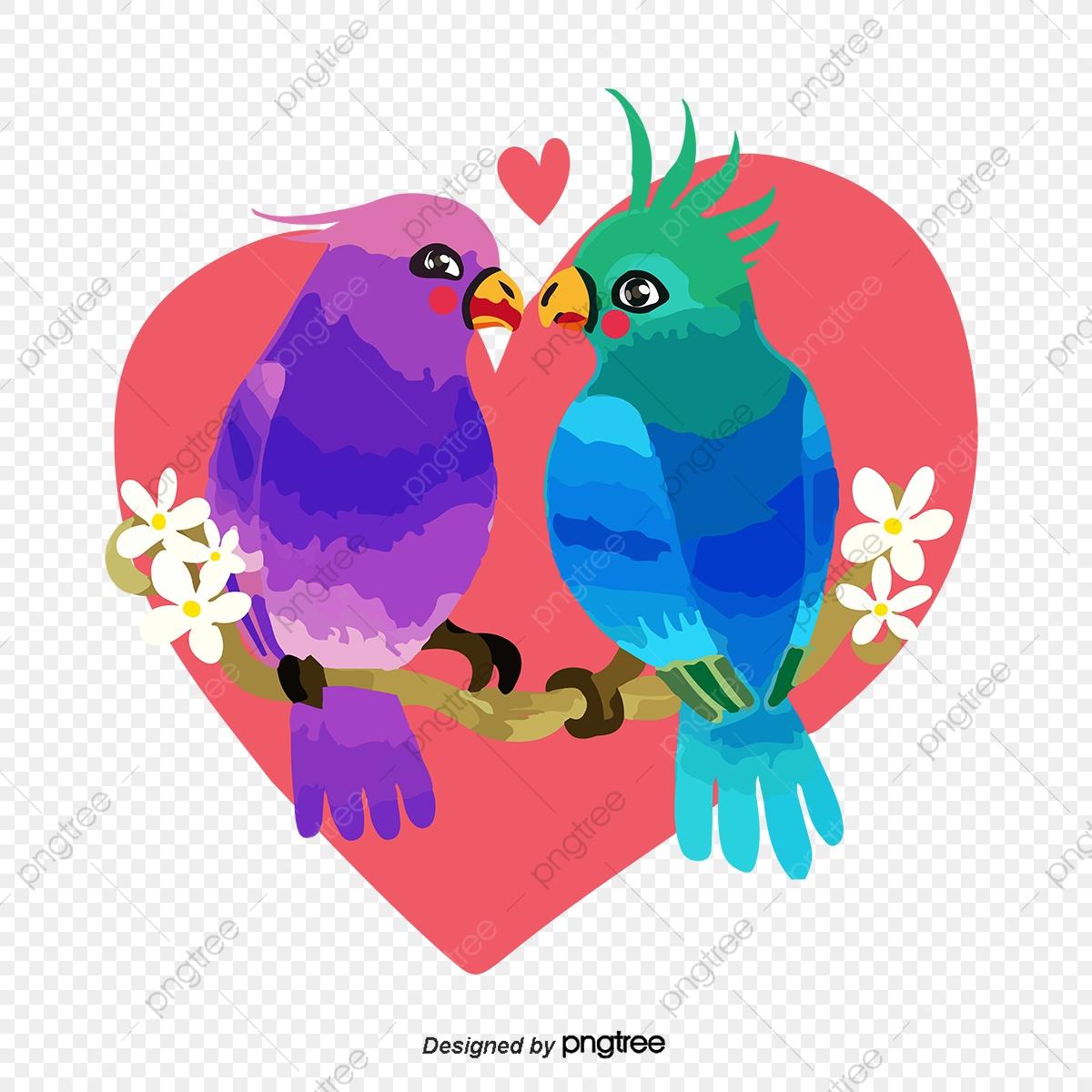 صور طيور الحب 33