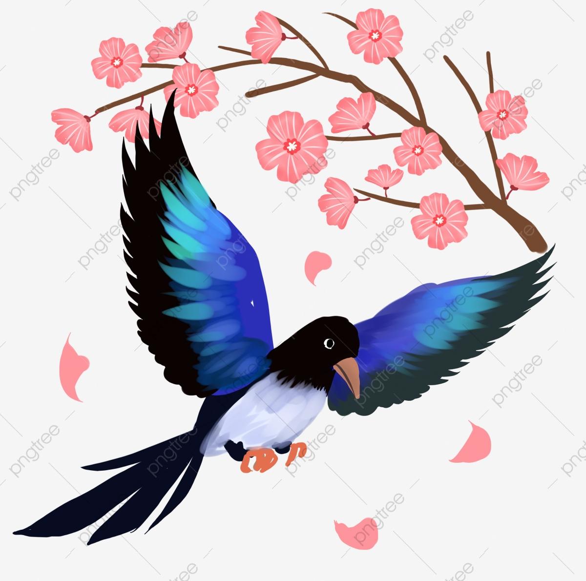 صور عصافير 10