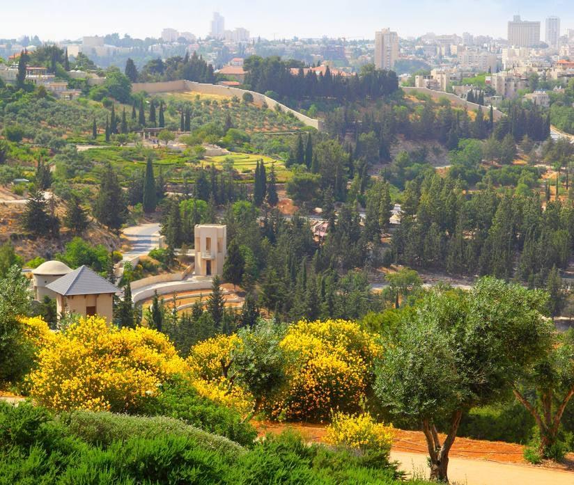 صور عن فلسطين 6