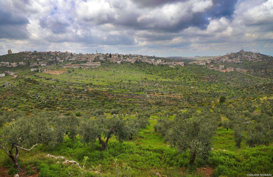 صور عن فلسطين 9